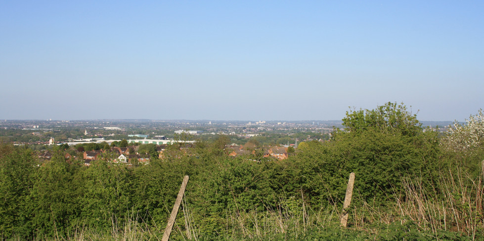 Dudley borough