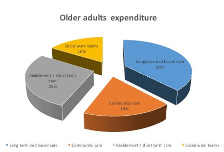 Pie Chart -Older Adults Expenditure