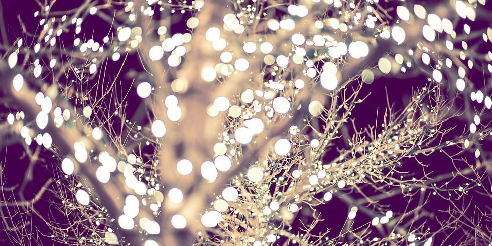 Winter Lights at Himley Hall (Fri to Sun)