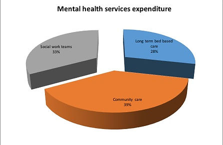 Pie Chart -mental Health Services Expenditure
