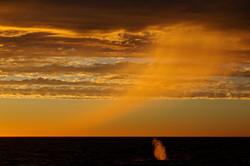 Sunset_blow_BH6A2164