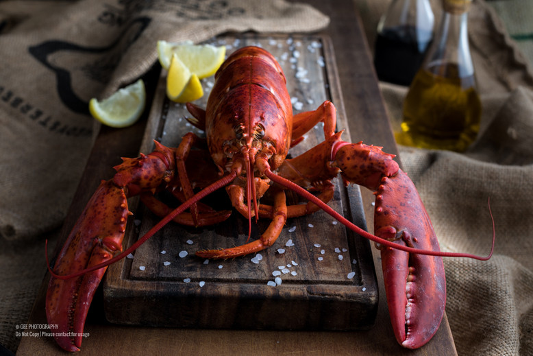 Lobster food photography by Gee Photography