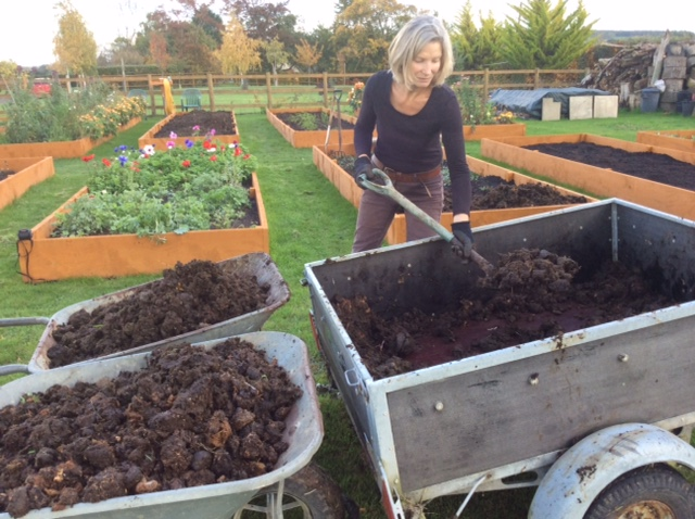 Maintaining the cut flower plot