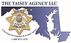 Taisey Logo (2) (1).png