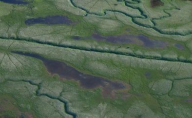 Hintergrund_Alaska.jpg