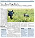 Klotener Anzeiger_30_10_2014.jpg