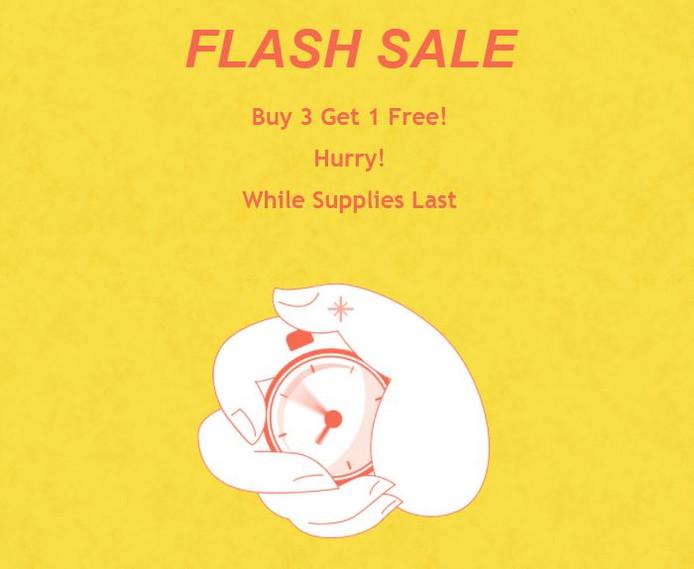 Buy 3 Get 1 FREE! Flash Sale!