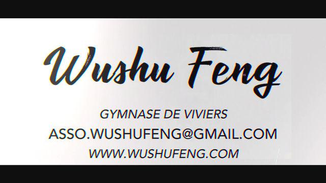Wushu Feng en démo