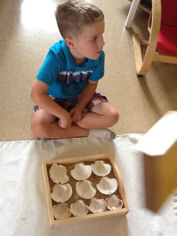New counting activity