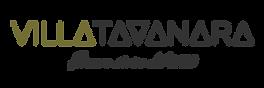VT_Logo_scritta.png