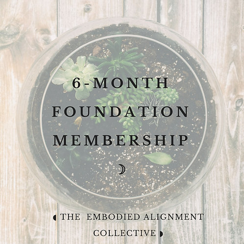 6 months Foundation Membership