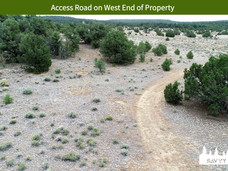 Access Road on West End of Property.jpeg
