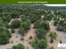 Central Interior of the Property.jpeg