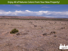 Enjoy All of Natures Colors From Your New Property!.jpeg