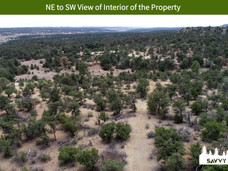 NE to SW View of Interior of the Property.jpeg