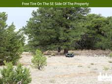 Free Tire On The SE Side Of The Property.jpeg