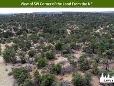 View of SW Corner of the Land From the NE.jpeg