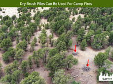 Dry Brush Piles Can Be Used For Camp Fires.jpeg