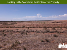 Looking to the South from the Center of the Property.jpeg