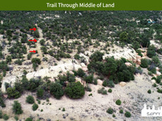 Trail Through Middle of Land.jpeg