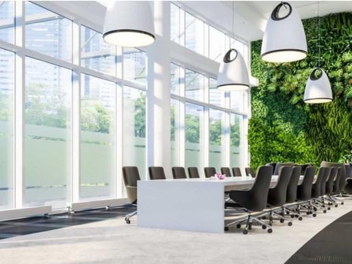 Veranos en la oficina sostenibles