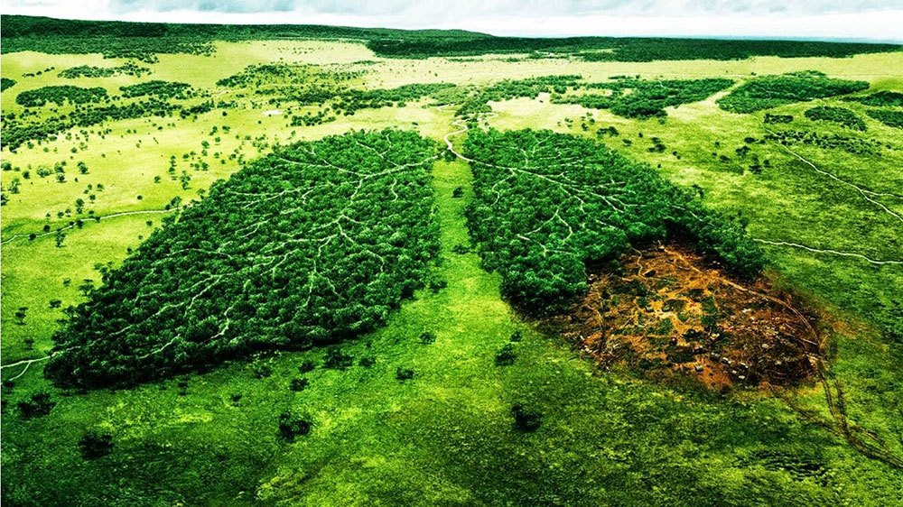 Environmental impact caused by the production of events