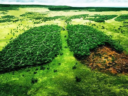 Impactos ambientales en la producción de eventos