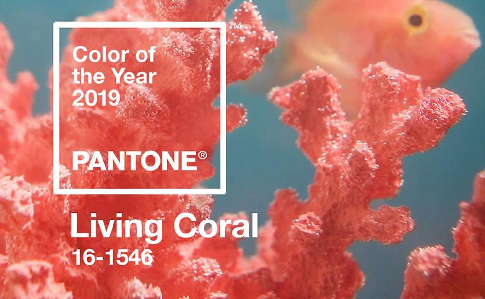 coral-pantone-tendencia