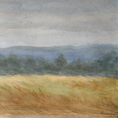 После дождя. 1999