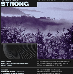 Four Year Strong AdMat.png