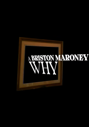 "A Briston Maroney Visualizer to ""Why"""