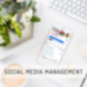 Social Media Management_complete.png