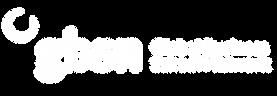 gbsn_logo_white-01.png