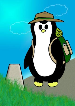 Crafty Penguin Hiking Design