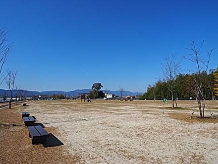 P3250154.JPG.jpg