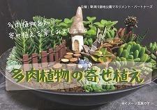 7月24日(金・祝)多肉植物の寄せ植え