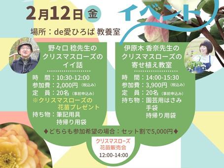 【2月12日(金) クリスマスローズイベント】