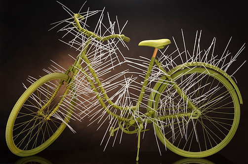 Sabra Bike