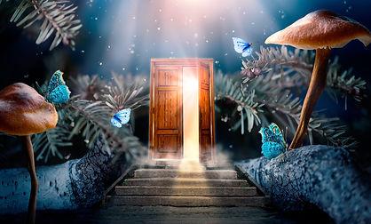 fairy tale door open butterfly steps.jpg