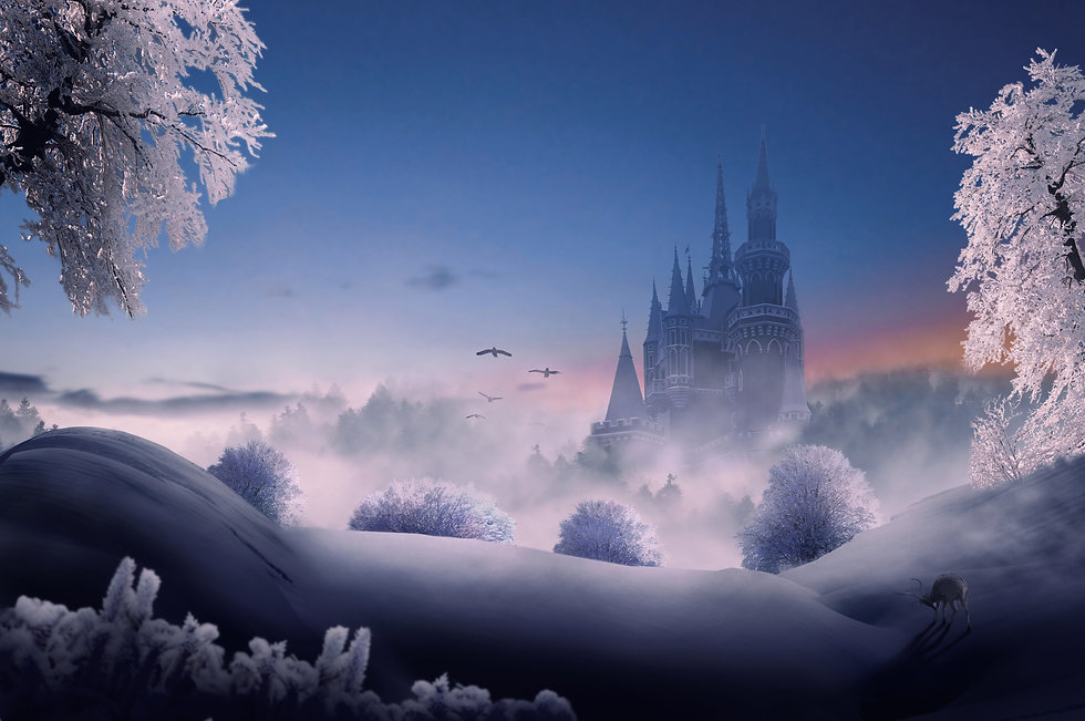 castle winter fairy tale .jpg