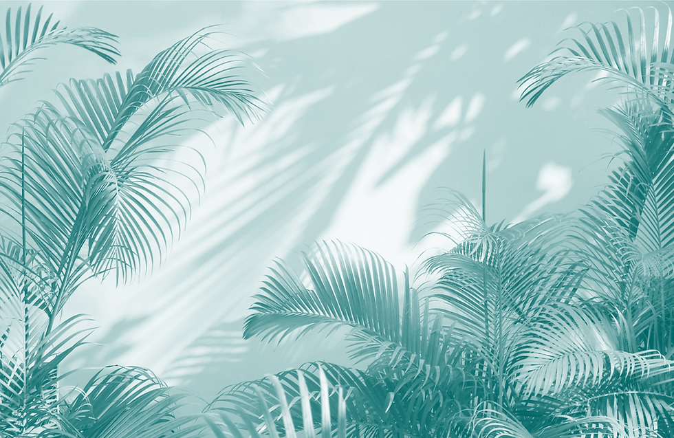 palms teal.png