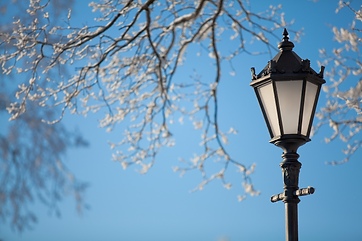 lamp post snow trees.png