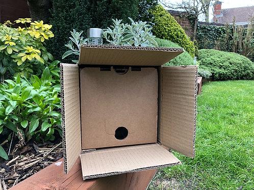 VITOP 10L BAG IN BOX SHIPPING BOX