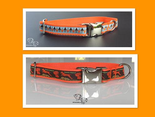 Ridgeback Starter Set Orange