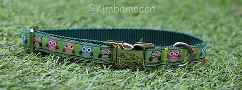 Small Owls green