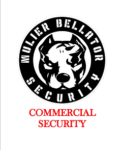 COMMERCIAL SECURITY.png
