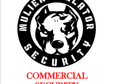 Business/Commercial Security - MBS Does it Better.