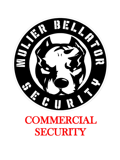 Commercial Security Assessment