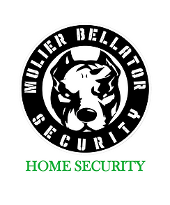 HOME SECURITY.png