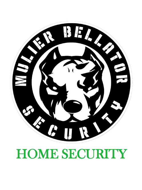 Home Security Assessment